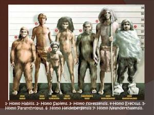 cmc-1er-trimestre-homo-sapiens1-7-728